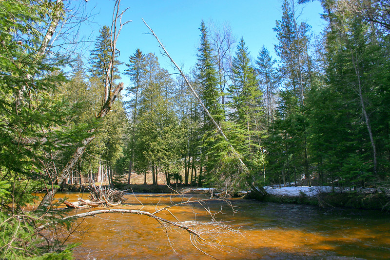 Pigeon River -- 650'