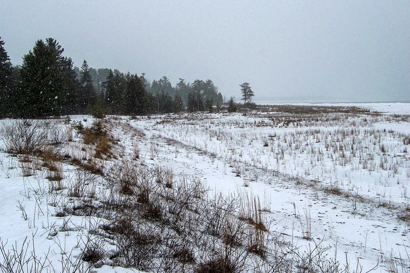Besser Natural Area Loop Trail -- 580'