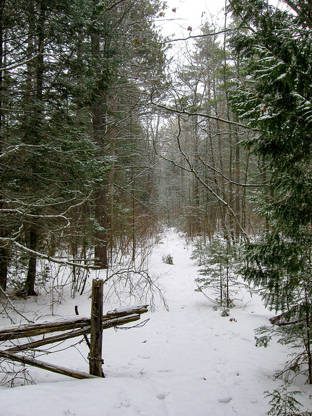 Besser Natural Area Access Trail