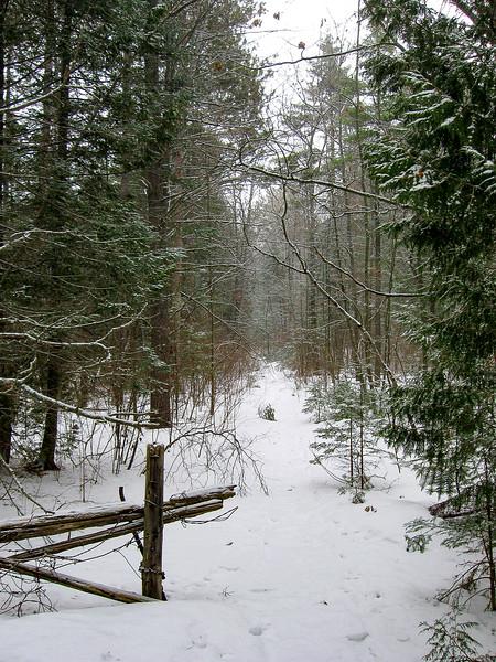 Besser Natural Area Access Trail -- 610'