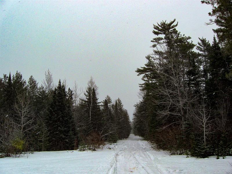 Besser Natural Area -- 610'