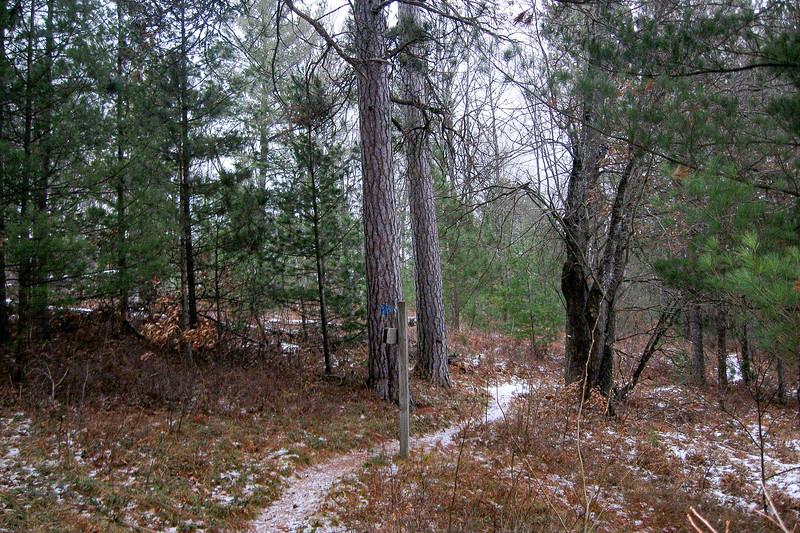 Beaver Lodge-Eagle's Roost Loop Trail Junction