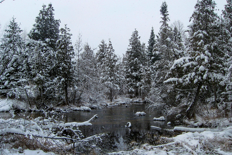 Cedar Creek from Banwell Raod