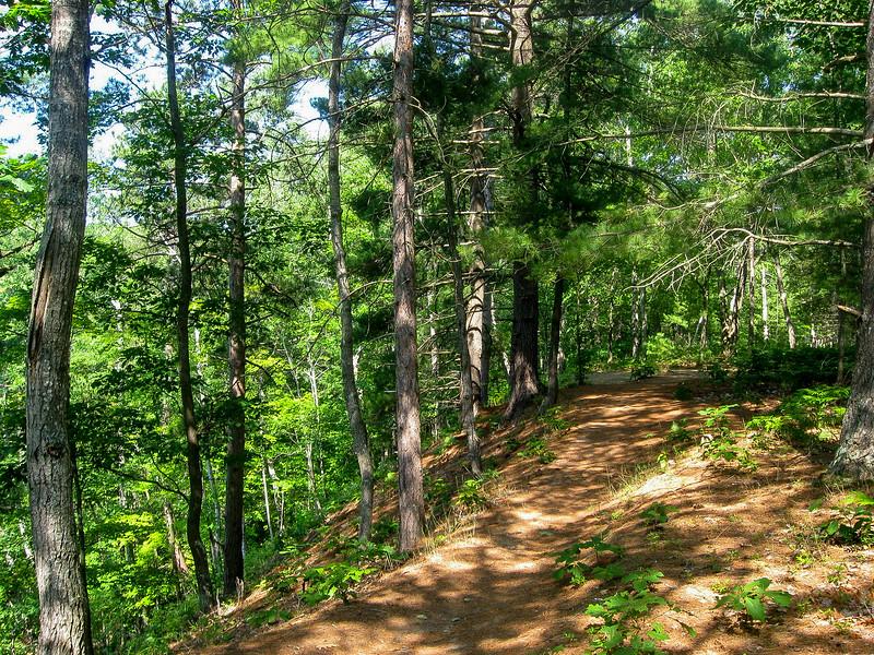 Carp Creek Gorge Loop Trail