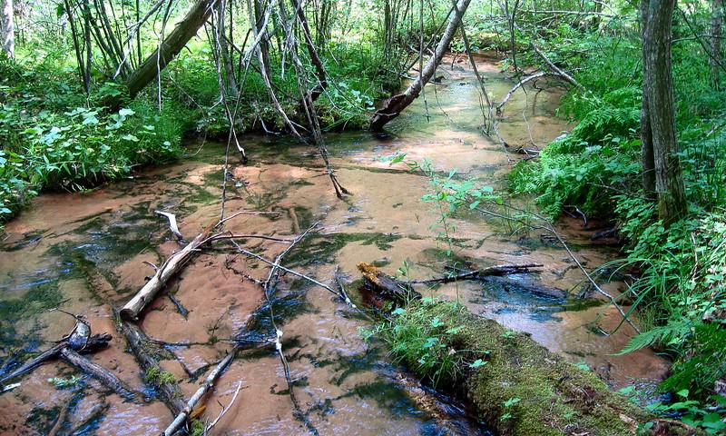 Carp Creek