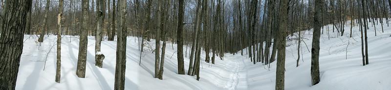 The trail down follows a shallow ravine in the hillside.