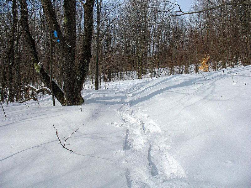 The snowshoes were handy, I'm on about three feet of snow here.