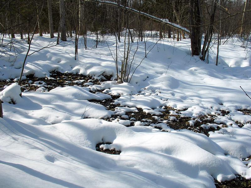 Jordan River Pathway