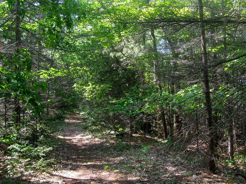 South Shore Path