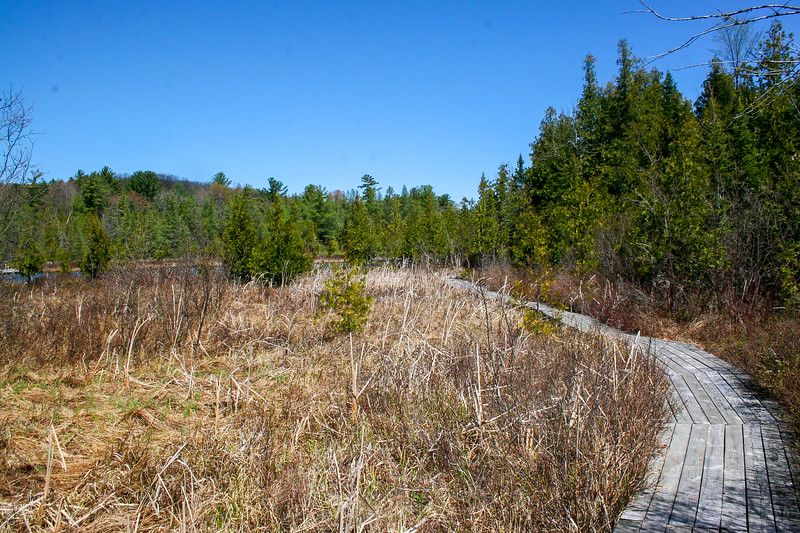Sedge Meadow Trail