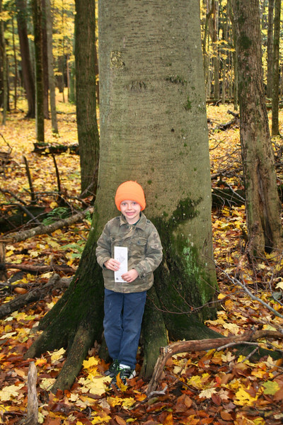Alex ID'd this big beech...quite proud of himself (Dad was too!)...