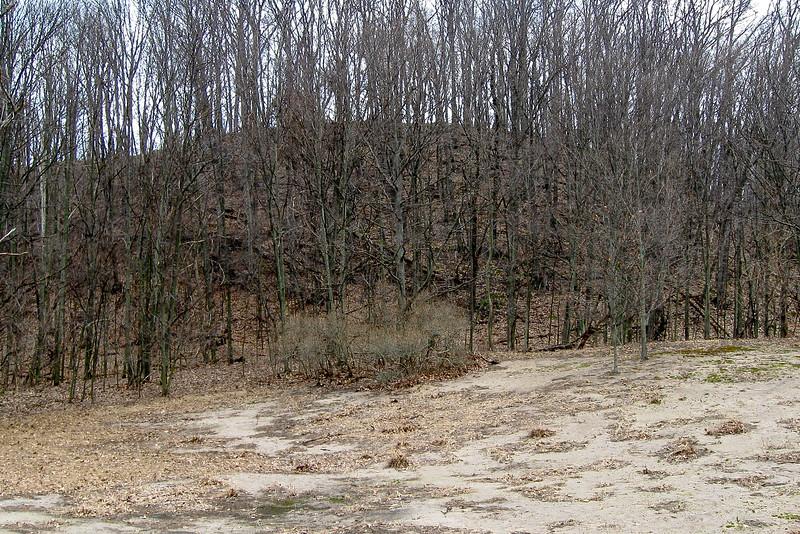 Homestead Trail
