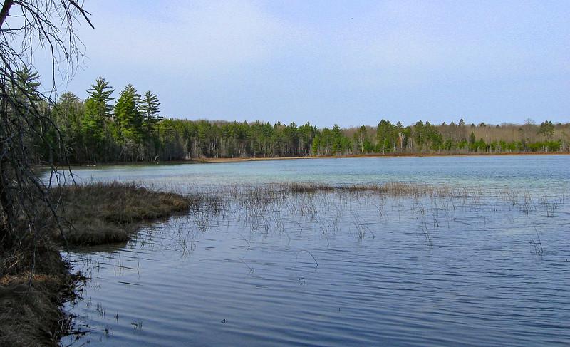 Pickeral Lake Pathway