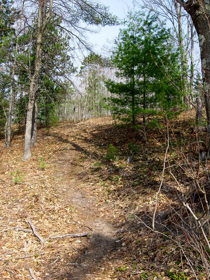 I was pleased to discover a number of trails leading up the bluff I had planned on having to bushwhack...