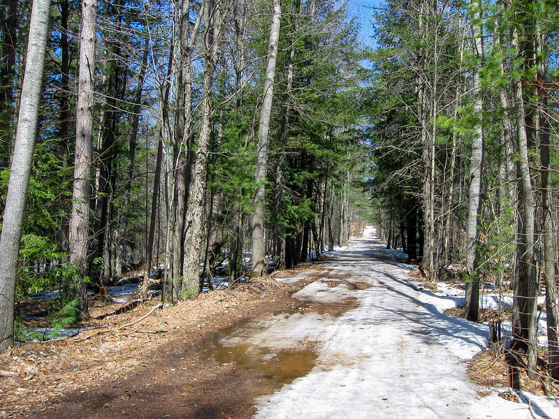 Soon the trail turned away from Weber Lake and crossed this narrow seasonal road...
