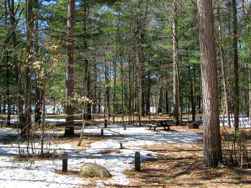 Weber Lake State Forest Campground