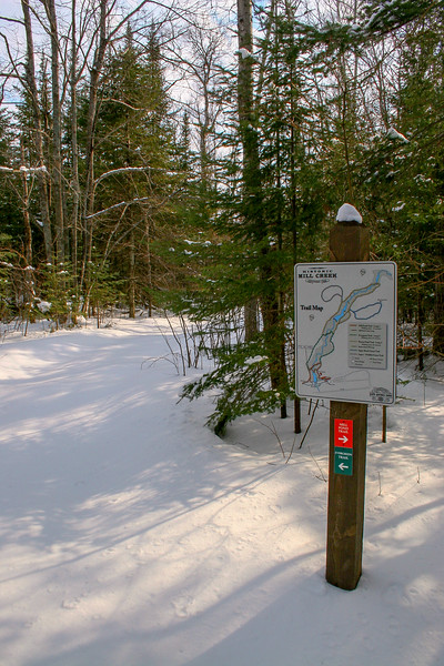 Mill Pond-Evergreen Trail Junction