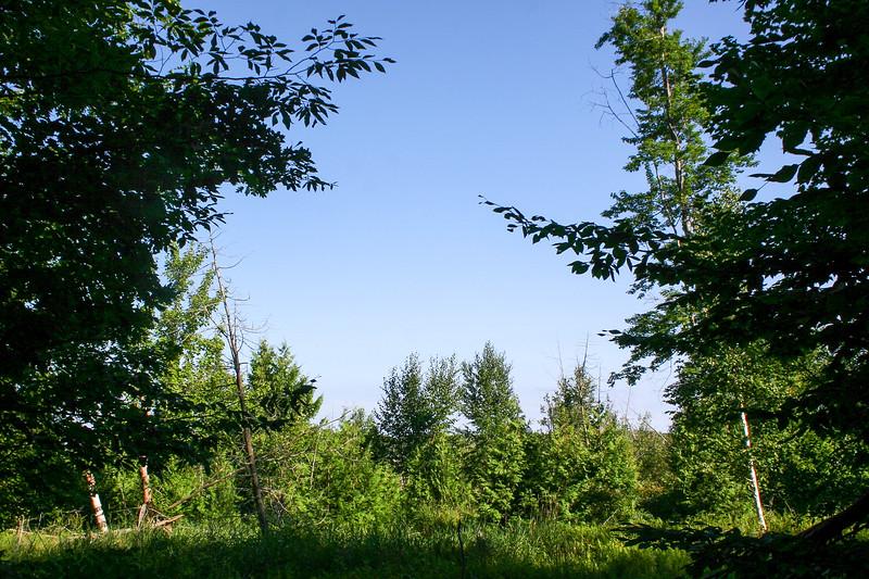 Mud Lake Trail