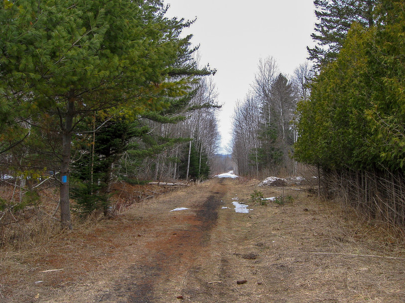 A road walk from Kipp Road to near this point north of North Conway Road the trail briefly follows an old rail right-of-way before becoming a road walk again...