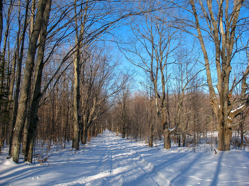 North Country Trail (Zmikly Road)