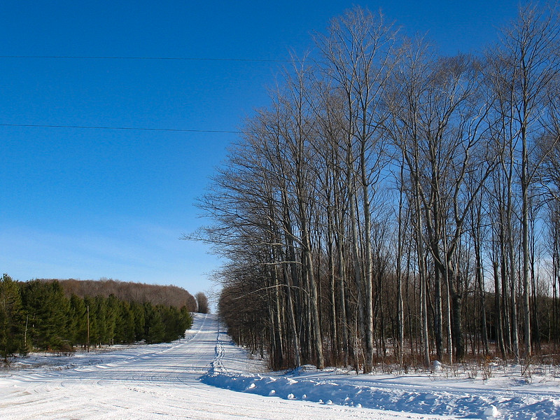 North Country Trail (Van Road)