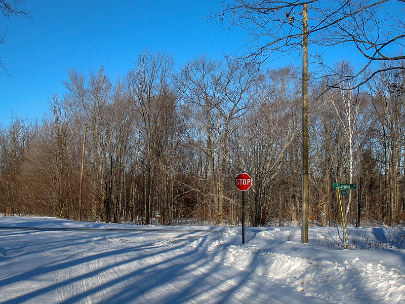 North Country Trail (Zmikly & Levering Roads)