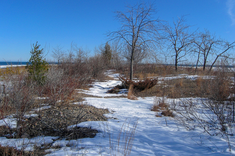South Point Spur Trail