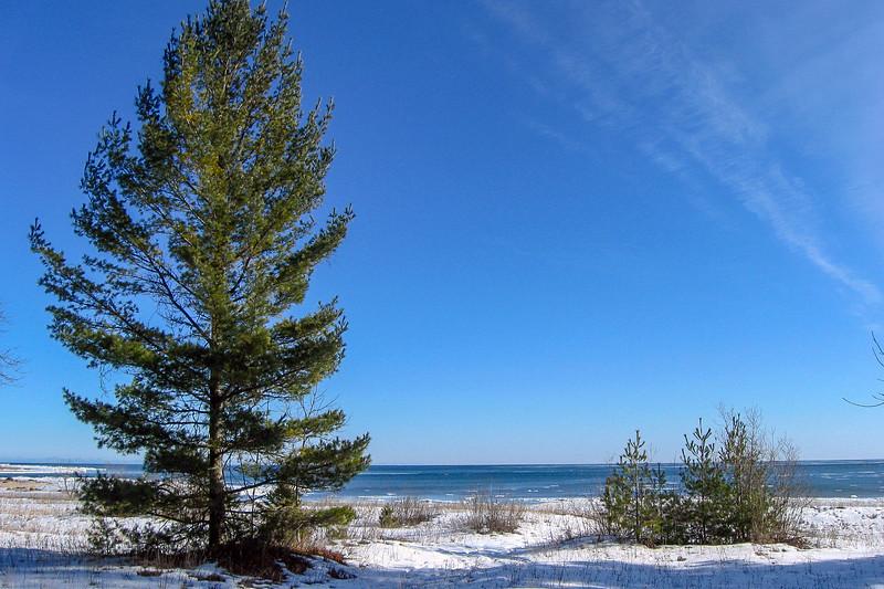 Algonquin Trail - Twin Pines Campsite