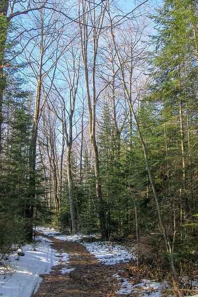 Algonquin Trail