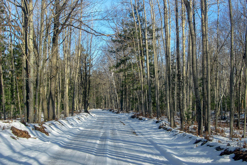 One of the few benefits of this ridiculously snowless winter is the ability to get vehicles down normally impassible trail roads...one usually can't get within 7-miles of the park by car in February...