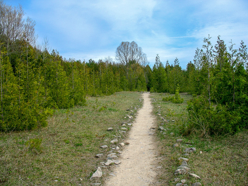 The trail started out through an open field surrounded by Cedars...