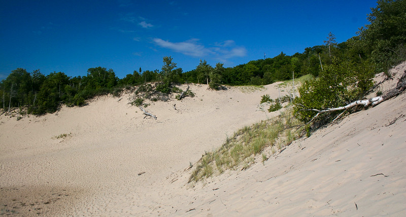 I decided to stick to one of the smaller dunes today...