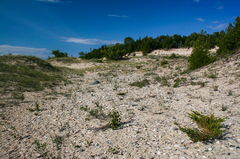 North Point Dunes