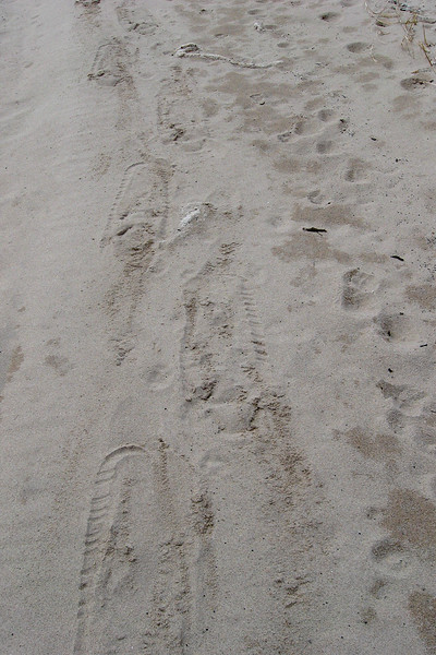 Snowshoe tracks on a beach...only in Michigan...