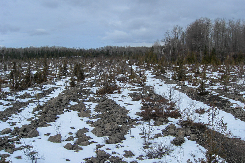 It's hard for me to imagine what kind of a spin the DNR is going to put on all this...hopefully a mix of mining history coupled with the ecological consequences of such activities...