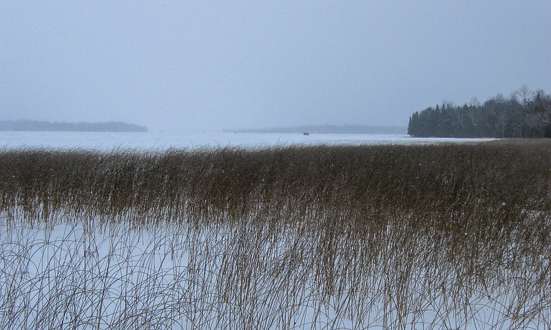 The snow lightened up just a tad allowing for a brief, limited view down the lake to the east...