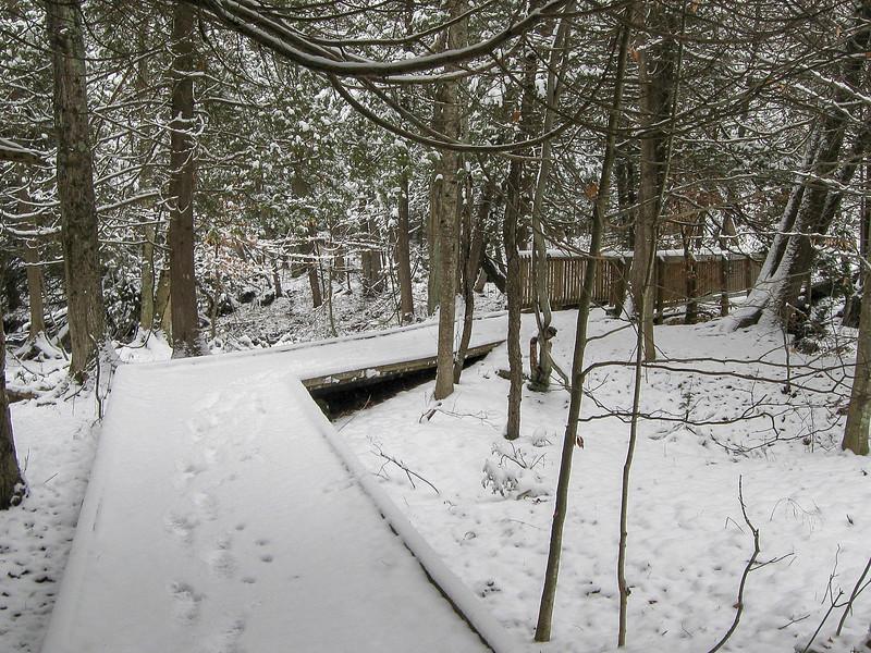 A nice boardwalk leads to bridge #3...