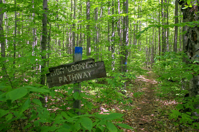 Shingle Mill-High Country Pathway Junction