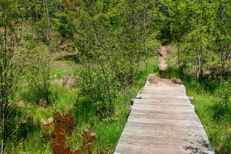 Shingle Mill Pathway