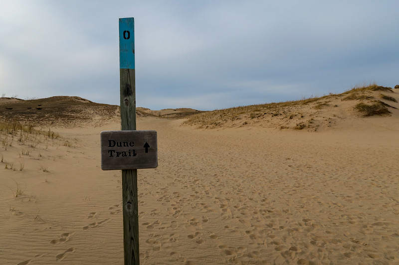 The Dune Trail