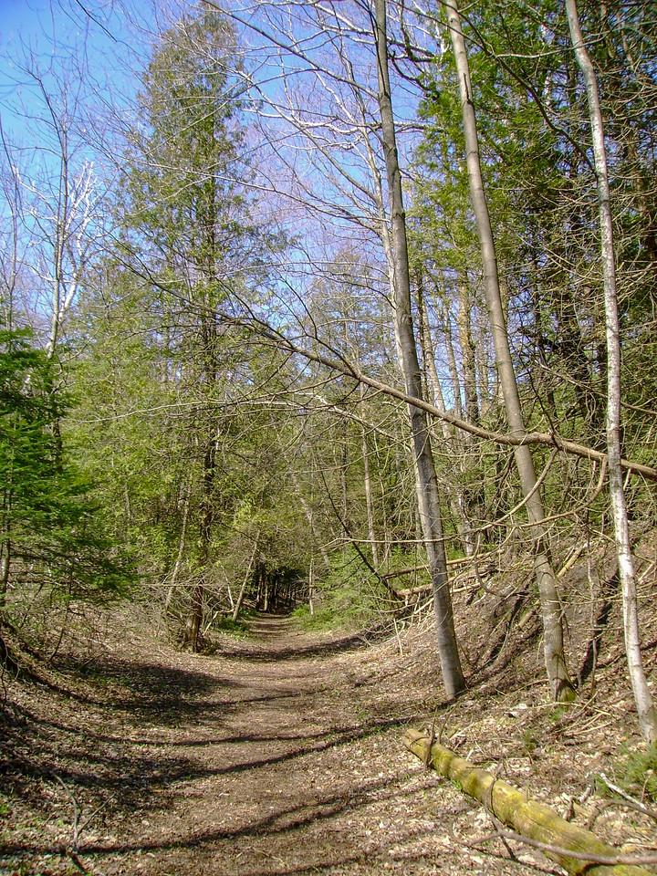 It Looks Like a Trail...