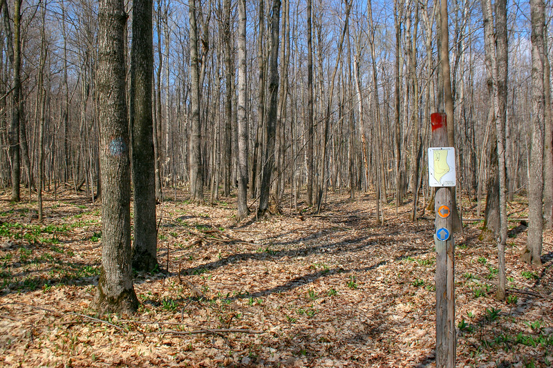 Orange-Blue Trail Junction