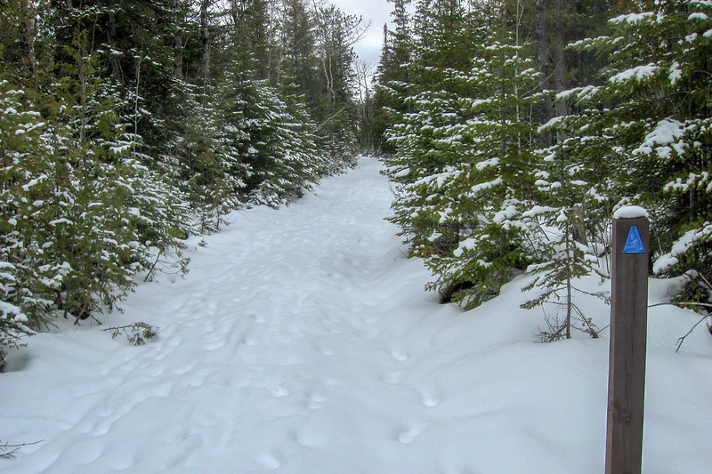 Loop #2 Trail
