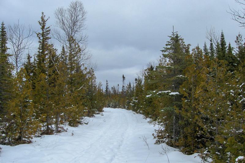 Loop #1 Trail