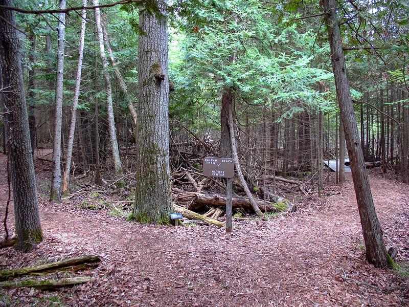 Cedar-Balsam-Beech Trail Junction