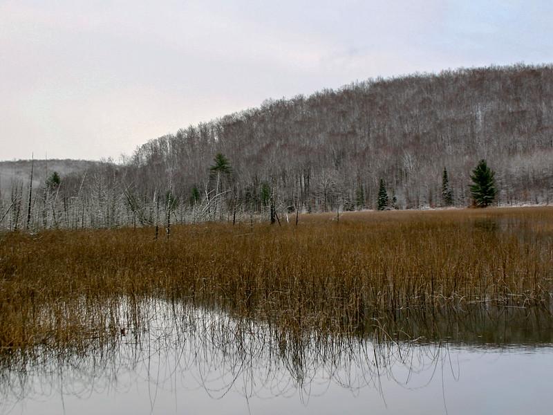 O'Brien's Pond