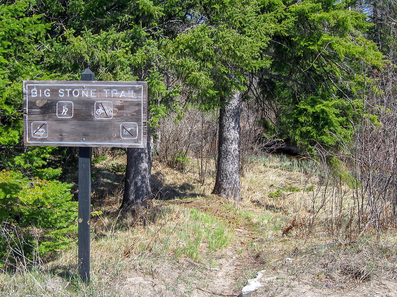 My third trail of the day, the Big Stone Trail would take me back out to the Lake Michigan shore...