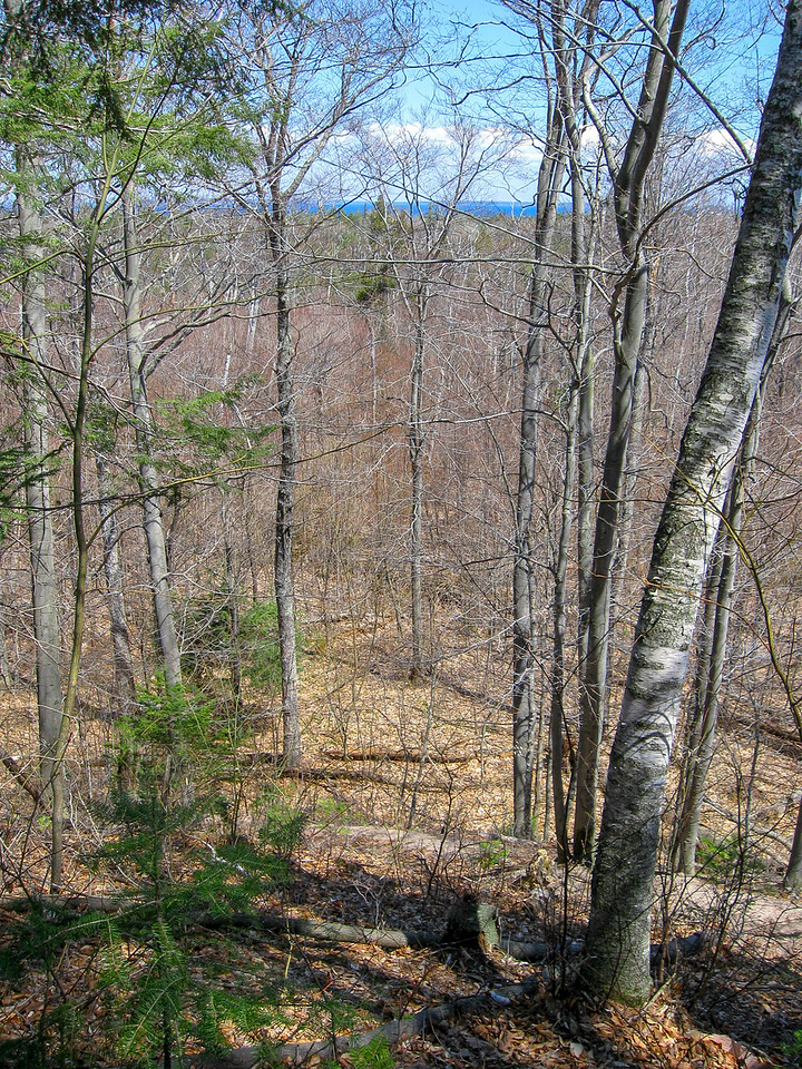 No panoramic views, but thanks to the lack of leaves the lake was visible from the top of Mt. Nebo...