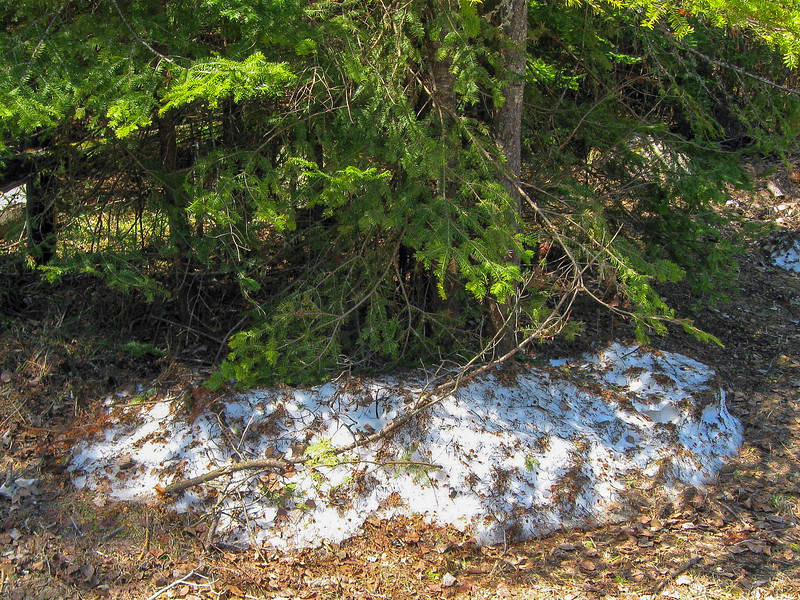 A few renegade snow piles still clung to the shadows around the parking area...
