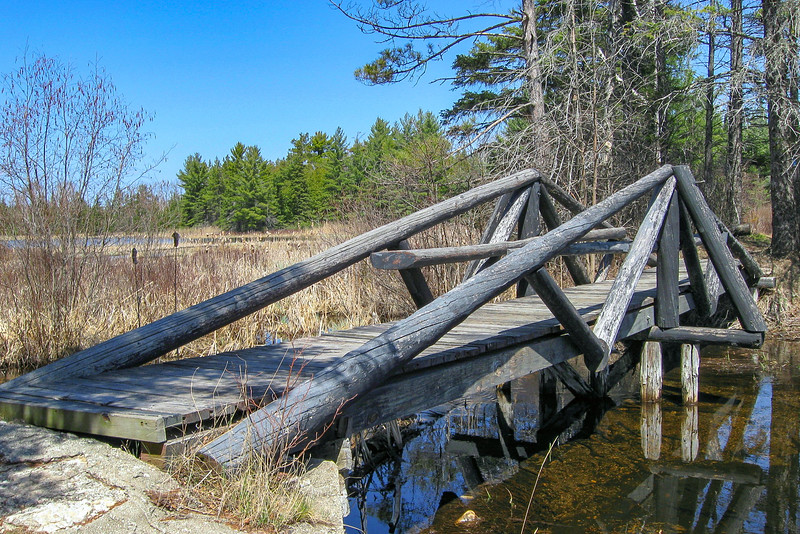 A series of sturdy bridges aids the trial in crossing the streams at the south end of Goose Pond...